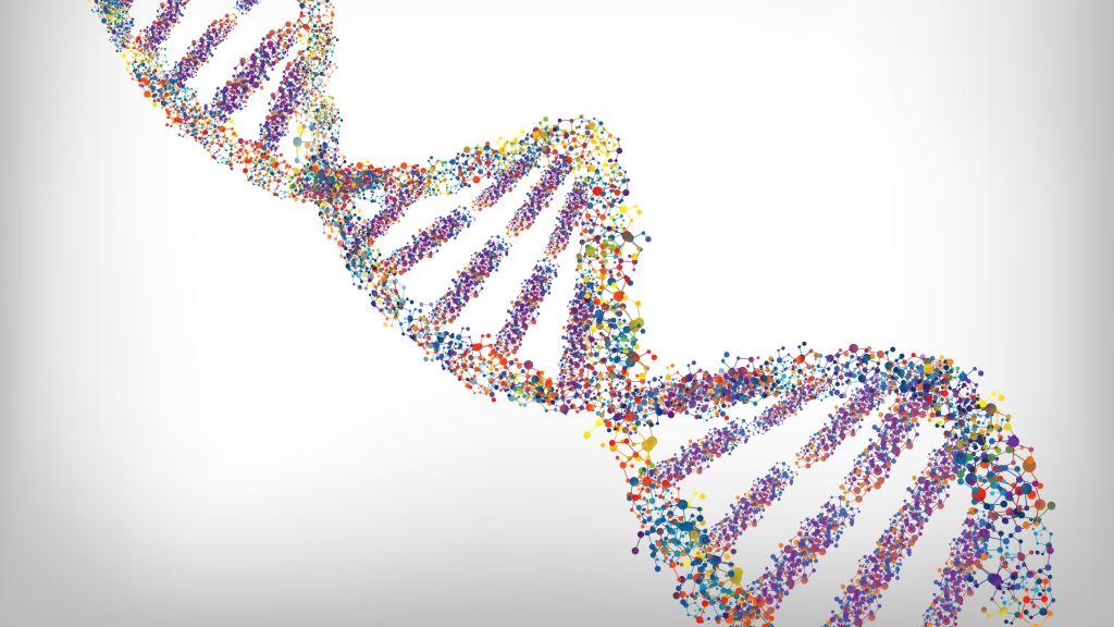 Come avanza e quali sono gli ostacoli dell'editing genetico ? Lo stato dell'arte sul CRISPR