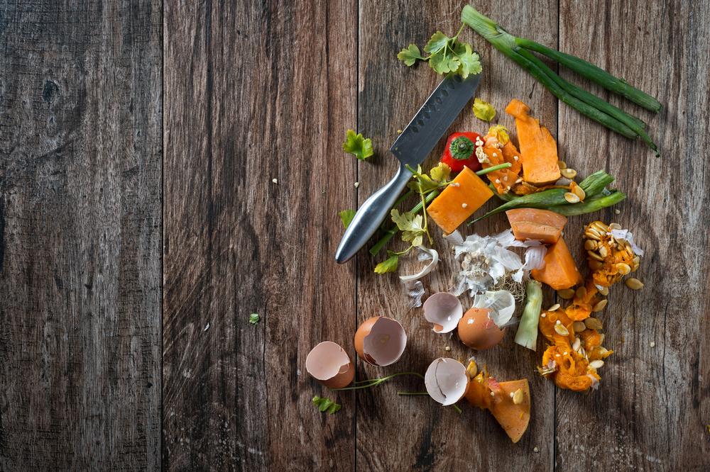 Waste catcher – Ecco quanto cibo sprecano gli italiani